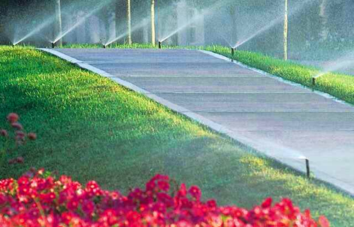 Many Irrigation Landscaping & Projects