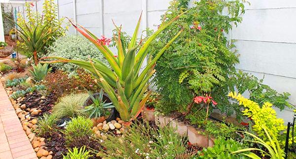 Le Roux Landscaping - 15% Discount
