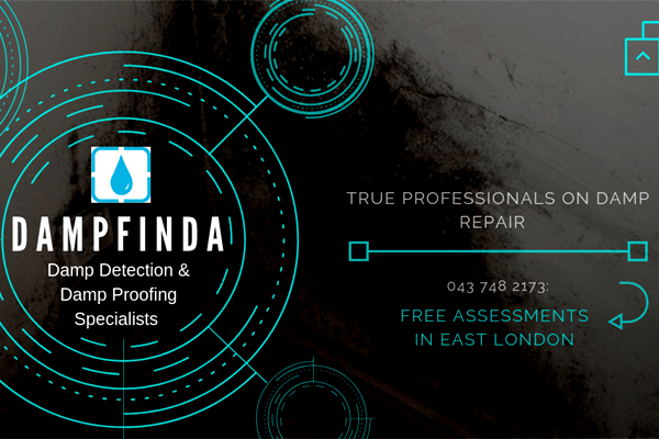 Damp Detection & Damp Proofing Specialists