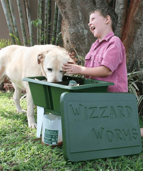 Wizzard Worms