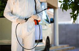 Peninsula Pest Control