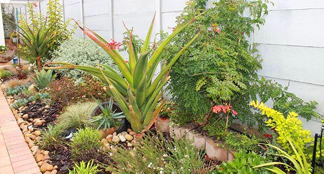Le Roux Landscaping