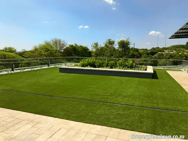 Forever Green Lawn