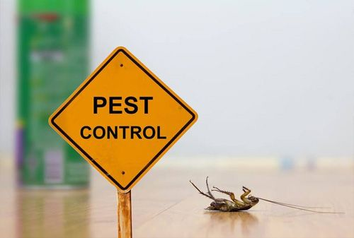 Pest Control Technologies (Pty) Ltd