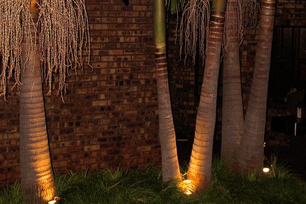 Garden Allumination