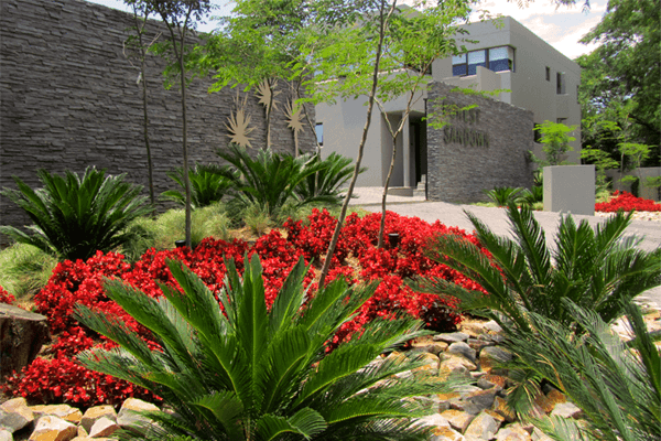 Office Landscaping