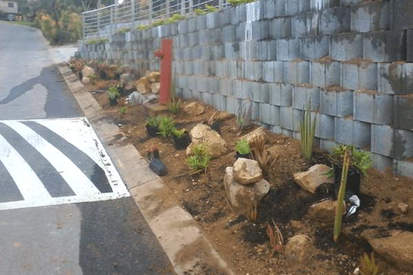 Landscaping & Garden Services