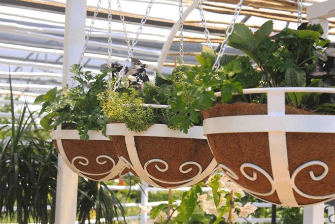 House & Garden Show